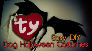 dog halloween costumes diy bat wings u0026 beanie baby tag