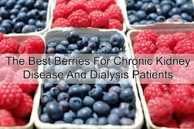 best berries for chronic kidney disease and dialysis patients