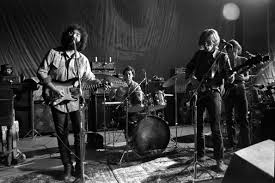the grateful dead and the dead heads how the fan culture evolved