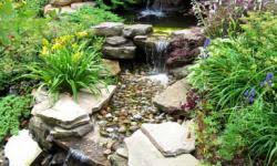 how to plan a rock garden howstuffworks