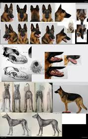 call of duty ghost logan mask 32 best video game dogs images on pinterest video game ghosts