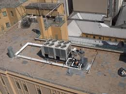 roof deck growing green guide