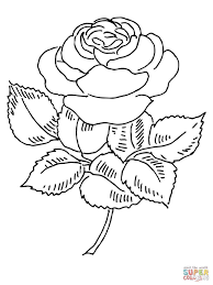 coloring pages of a rose coloring pages for adults 761