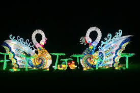 magical winter lights grand prairie holiday attractions attractions in dallas