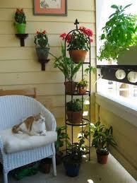 Apartment Patio Decor by The 25 Best Apartment Balcony Garden Ideas On Pinterest Small