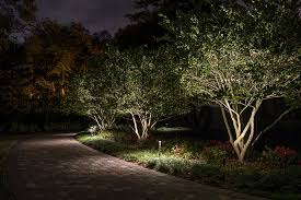 Light On Landscape Lighting Small Trees Sidera Landscape Lighting
