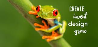 branding illustration multimedia web design mad frog design