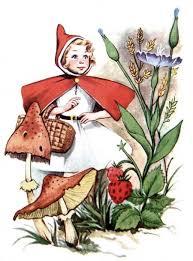 vintage red riding hood illustration children u0027s book