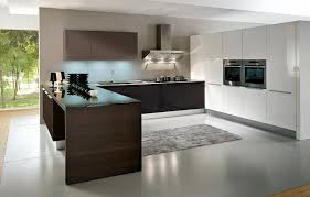 Kitchen Modern European Kitchen Cabinets  Home Design Interior - European kitchen cabinet
