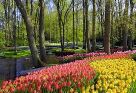 immagini di giardini fioriti i giardini fioriti pi禮 belli da vedere in primavera siviaggia