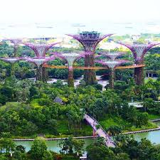 Flower Area - gardens by the bay