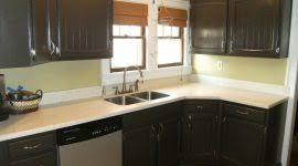 Painting Kitchen Cabinets Black Painting Kitchen Cabinets Cost Lofty Ideas 7 Of Cabinet Ideas