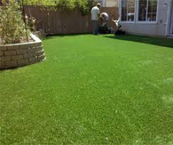 Fake Grass For Backyard by Remarkable Ideas How Much Does Astroturf Cost Excellent Artificial