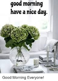 Have A Nice Day Meme - good morning have a nice day aru good morning everyone meme on