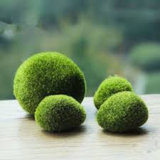 compare prices on moss stones online shopping buy low price moss