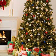 christmas tree shop online wondrous christmas treeshop enjoyable tree shop online net shopnet