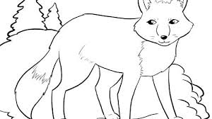 coloring pages about winter winter animals coloring pages coloring pages animals realistic