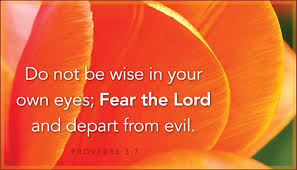 bible verses about wisdom proverbs 3 7 hd wallpaper free download