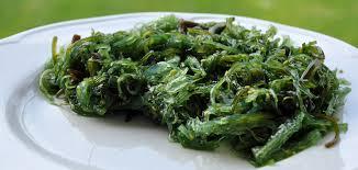 comment cuisiner les algues comment cuisiner les algues luximer le de la mer