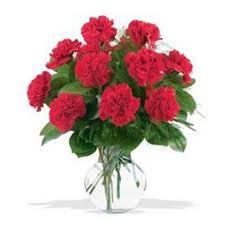 carnation flowers carnation flowers delivery united states fa102188 vase