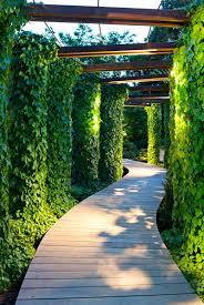 idee de jardin moderne pergola jardin contemporaine jardin autour dune maison