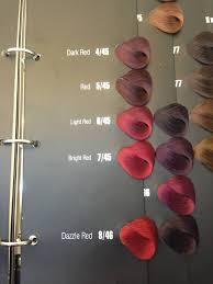 color book com oem hair color book salon hair color chart buy hair color chart