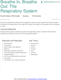 breathe in breathe out the respiratory system lesson plan