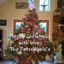 petrongolo evergreen plantation home facebook