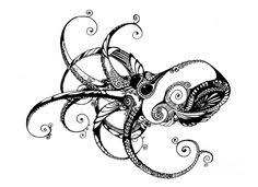black and white octopus photography google search drawing