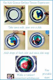 kids simple science experiments parts of a flower and surface tension