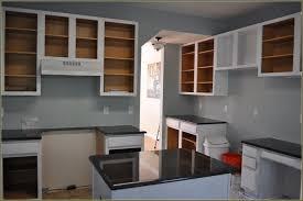 benjamin moore cabinet coat cabinet coat paint insl x home design ideas