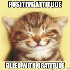 Gratitude Meme - positive attitude filled with gratitude very happy cat meme