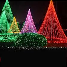 string lights on tree rainforest islands ferry
