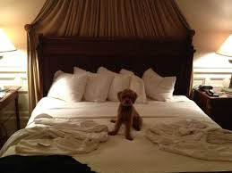 nice bed picture of wentworth mansion charleston tripadvisor