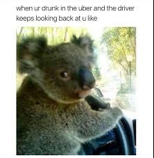 funny random meme dump album on imgur