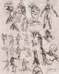 Leonardo Da Vinci Human Anatomy Drawings Human Anatomy Anatomy Art Leonardo Da Vinci Anatomical Studies