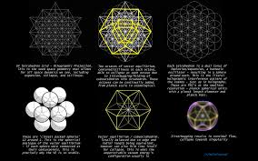 fractal holographic unified field theory nassim haramein