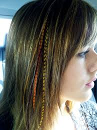 feathers in hair feather hair extensions best human hair extensions