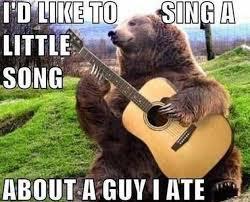 Bear Memes - bear meme picmia