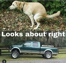 Soon Car Meme - best 25 chevy jokes ideas on pinterest ford girl chevy memes