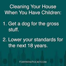 the 25 best clean house meme ideas on pinterest parenting memes