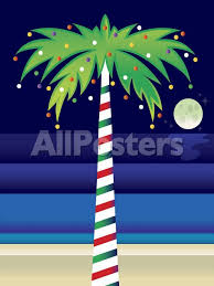 Decorating Palm Trees For Christmas by Palm Tree Decorated With Christmas Lights Photo At Allposters Com