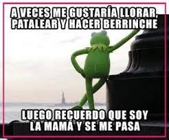 Rana Rene Memes - la rana gustavo o rana ren礬 fotos memes frases y humor