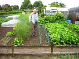 Urban Vegetable Garden by Pictures Of Gardening Awesome Your Veggie Garden Healthy Urban
