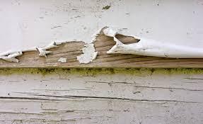 understanding common paint failures saint charles experts