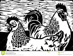 chickens stock illustration image 51630428