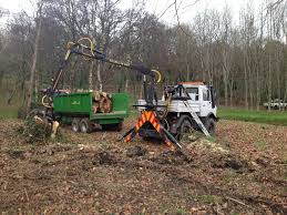 gwasanaethau coed tomos pierce tree services tree surgeons yell
