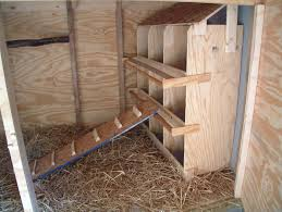 chicken coop plans nesting boxes 7 chicken nesting boxes galaxie