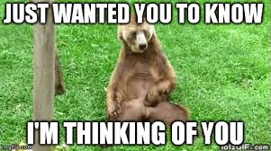 Thinking Of You Meme - image tagged in masturbating bear imgflip