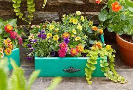 diy garden planters u2013 p u0026g everyday p u0026g everyday united states en